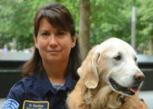 britagnie-rescue-dog-911-attacks-bretagne-horizontal-large-gallery