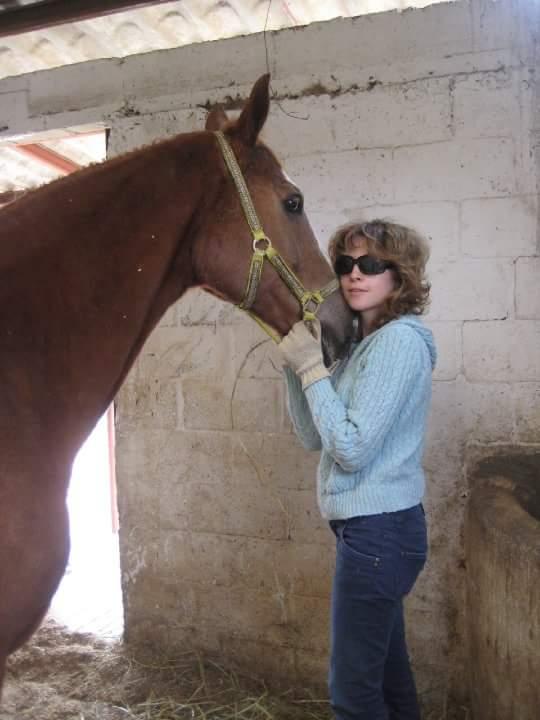 Tibetano, un caballo que sabe del amor.