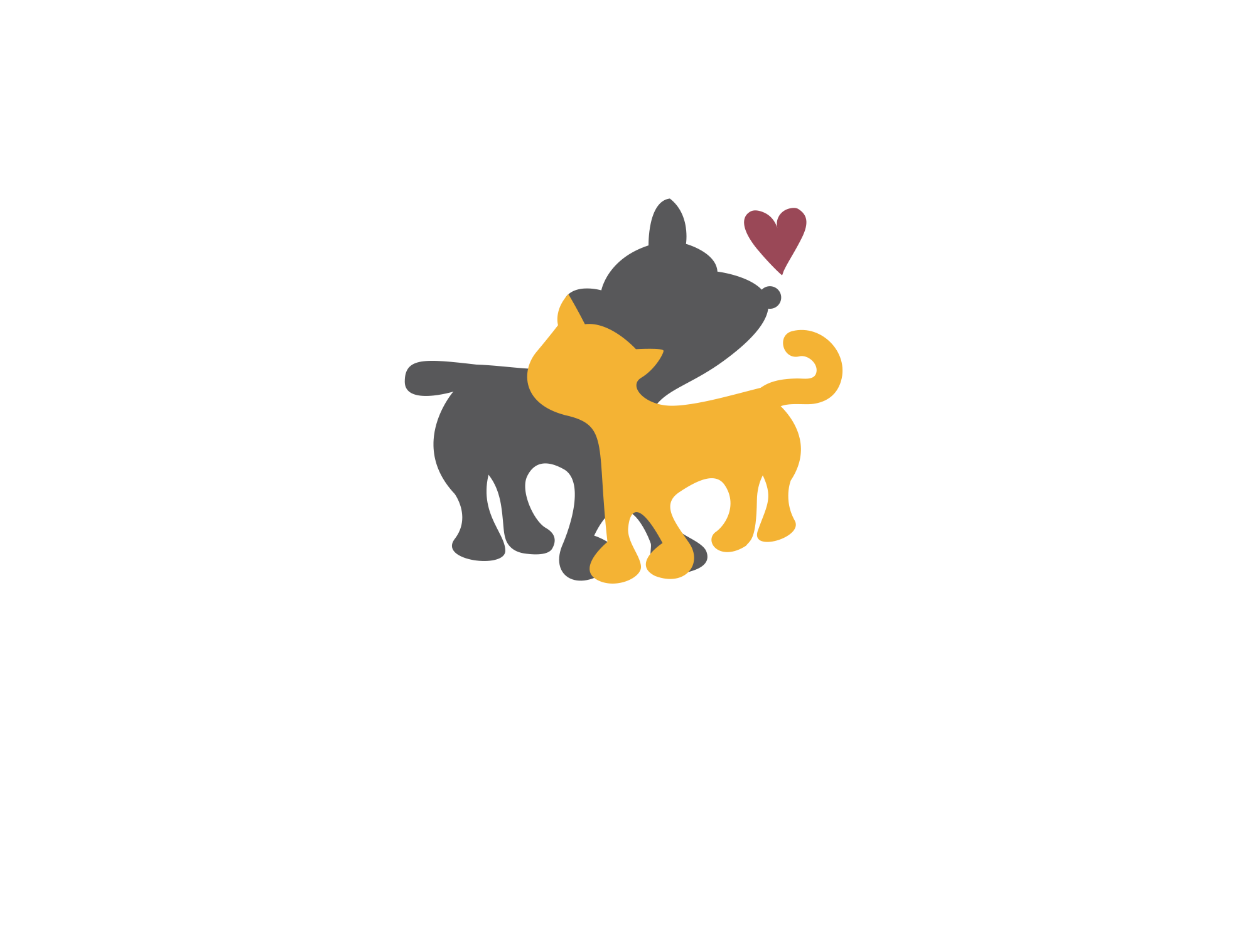 Angelica Cervantes Bienestar Animal